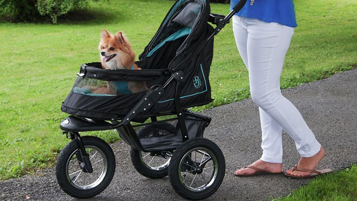Top 5 Best Pet Stroller and Types Of Pet